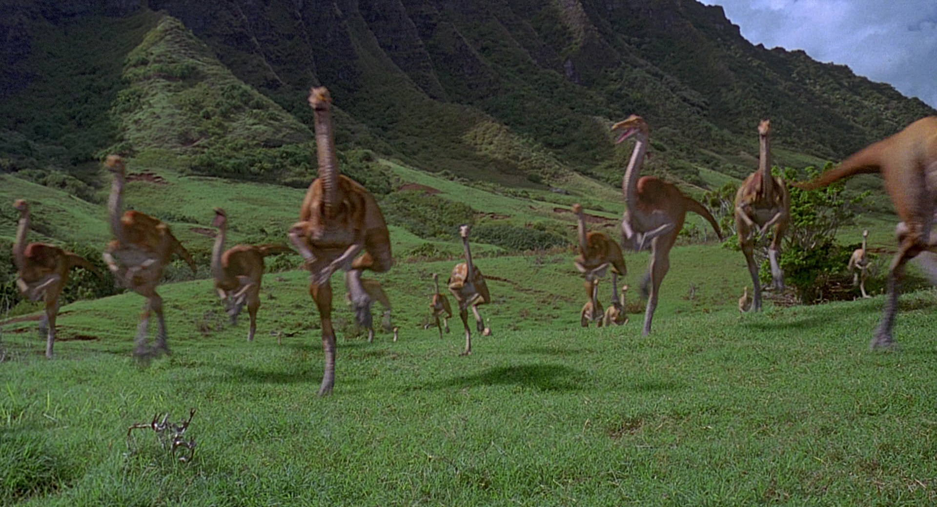 Gallimimus-herd.jpg